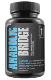 anabolic bridge product image