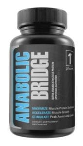 Anabolic-Bridge